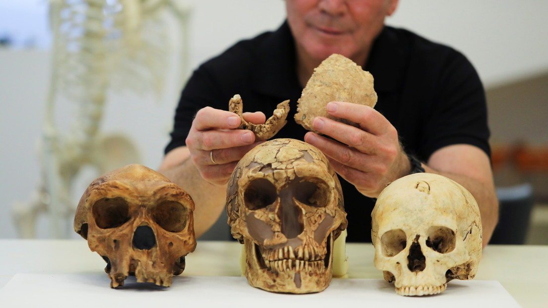 The new race of prehistoric man discovered in Israel